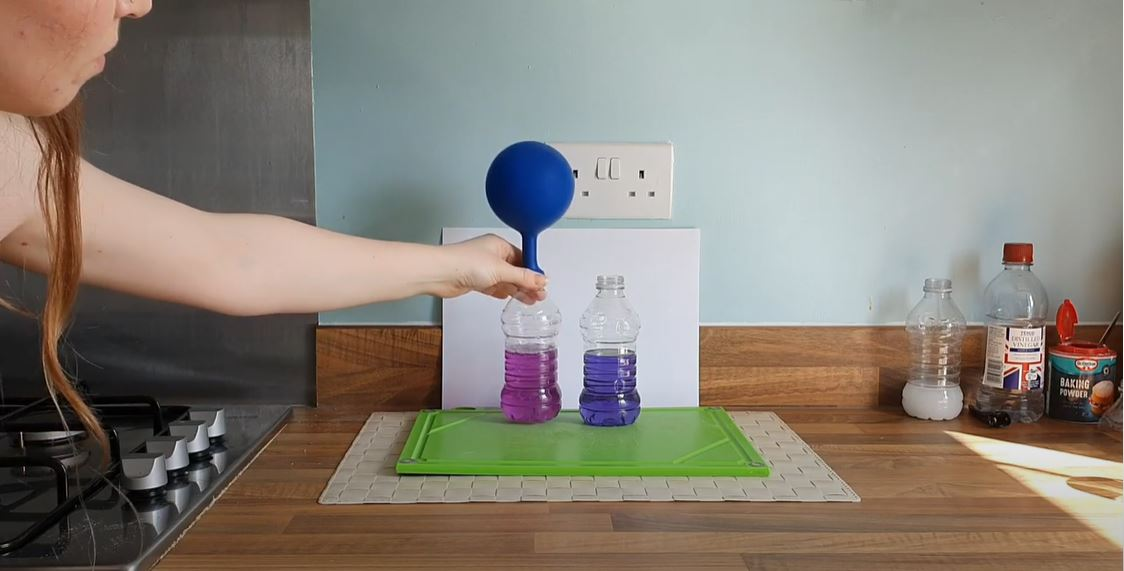Life Science Centre – Learn about ocean acidification with an experiment you can try at home