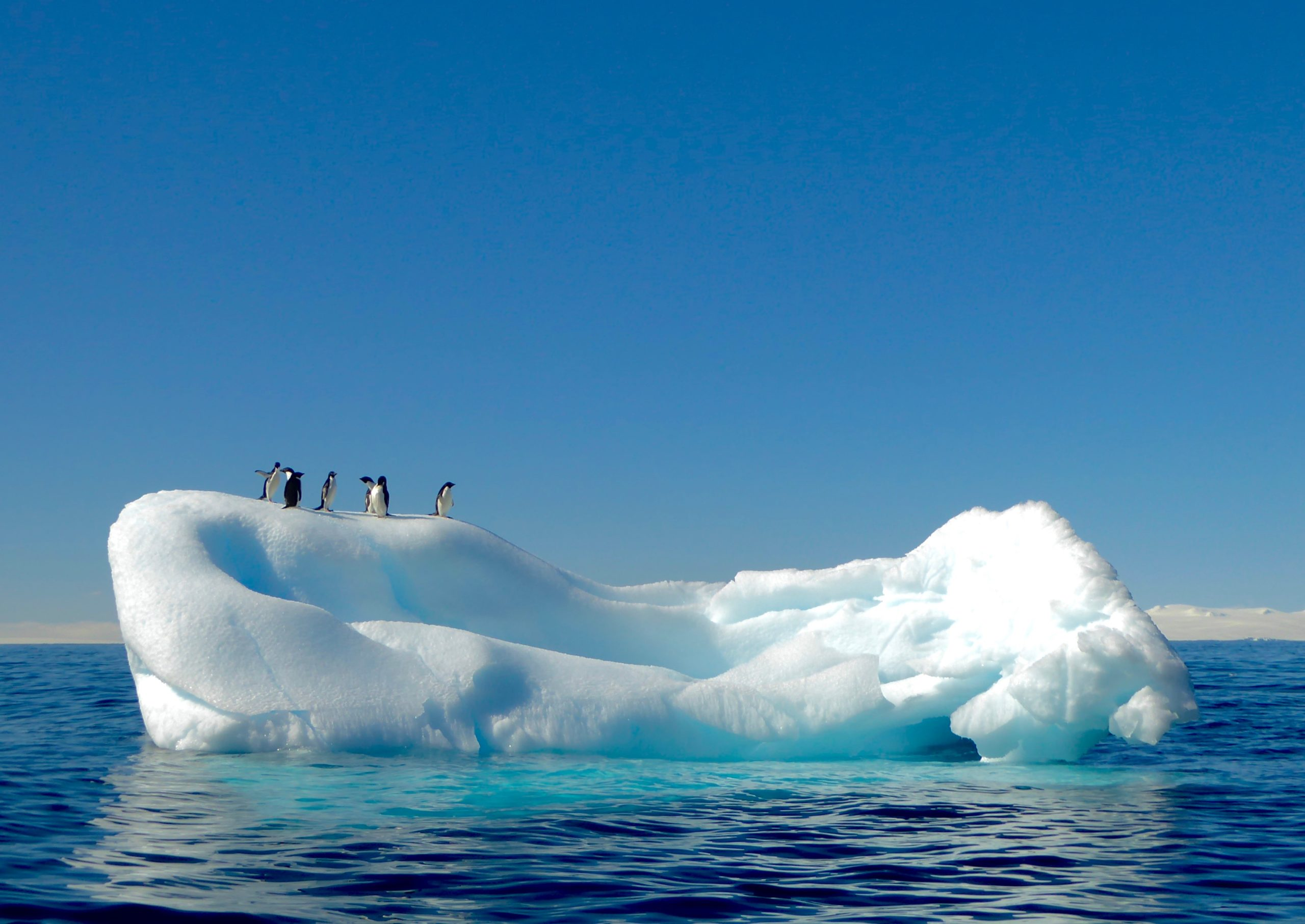 A short guide to climate science