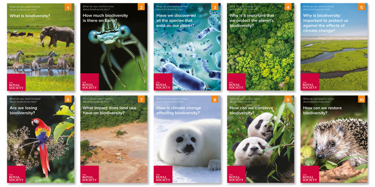 What do you want to know about biodiversity loss? (Royal Society)